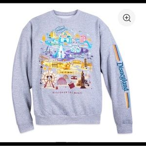 ISO Disneyland Discover the Magic sweater L-XL